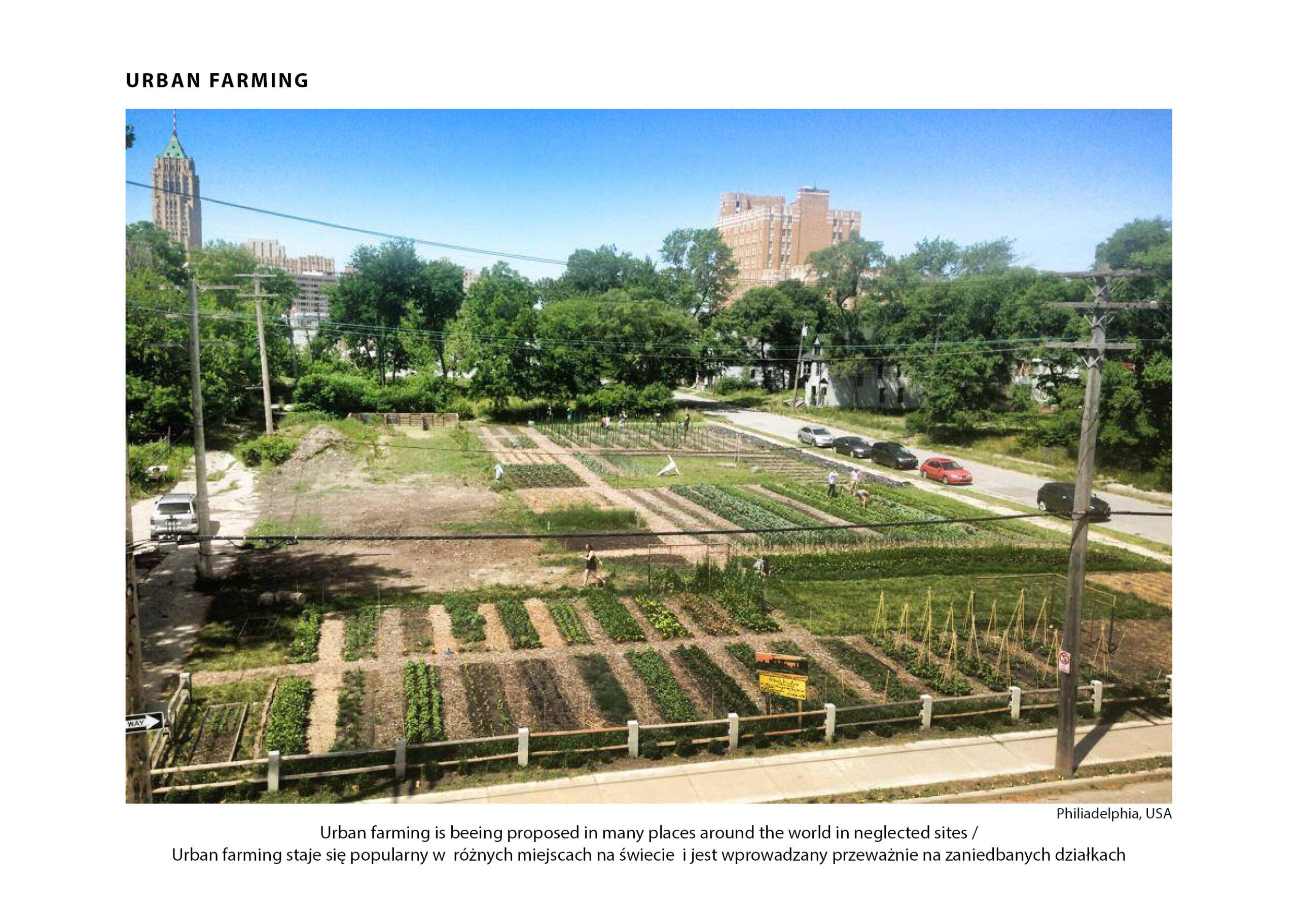 MJZ-Urban-Farming-XXI-Ogrody-Dzialkowe-Przyszlosci-1