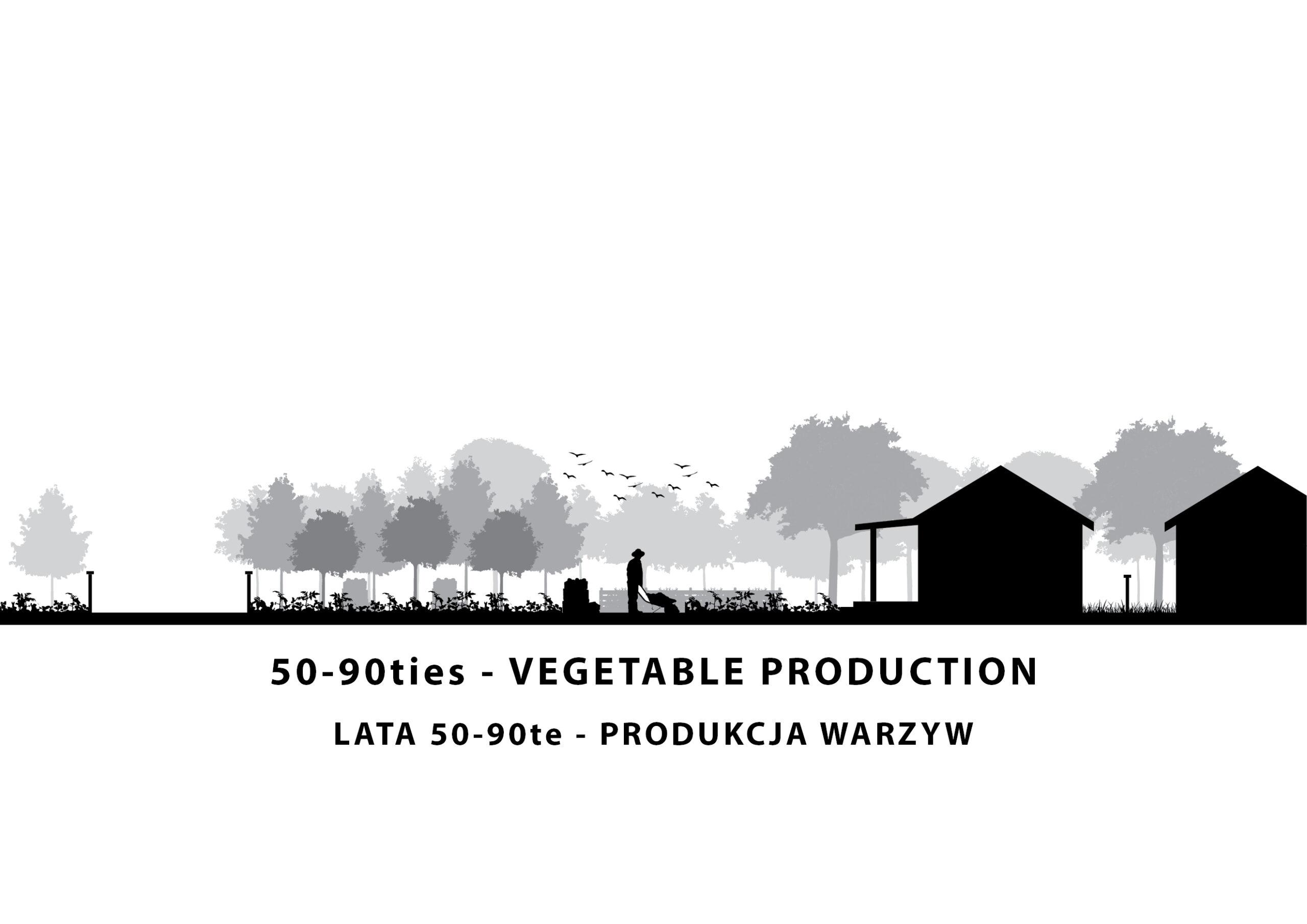 MJZ-Urban-Farming-XXI-Ogrody-Dzialkowe-Przyszlosci11-2