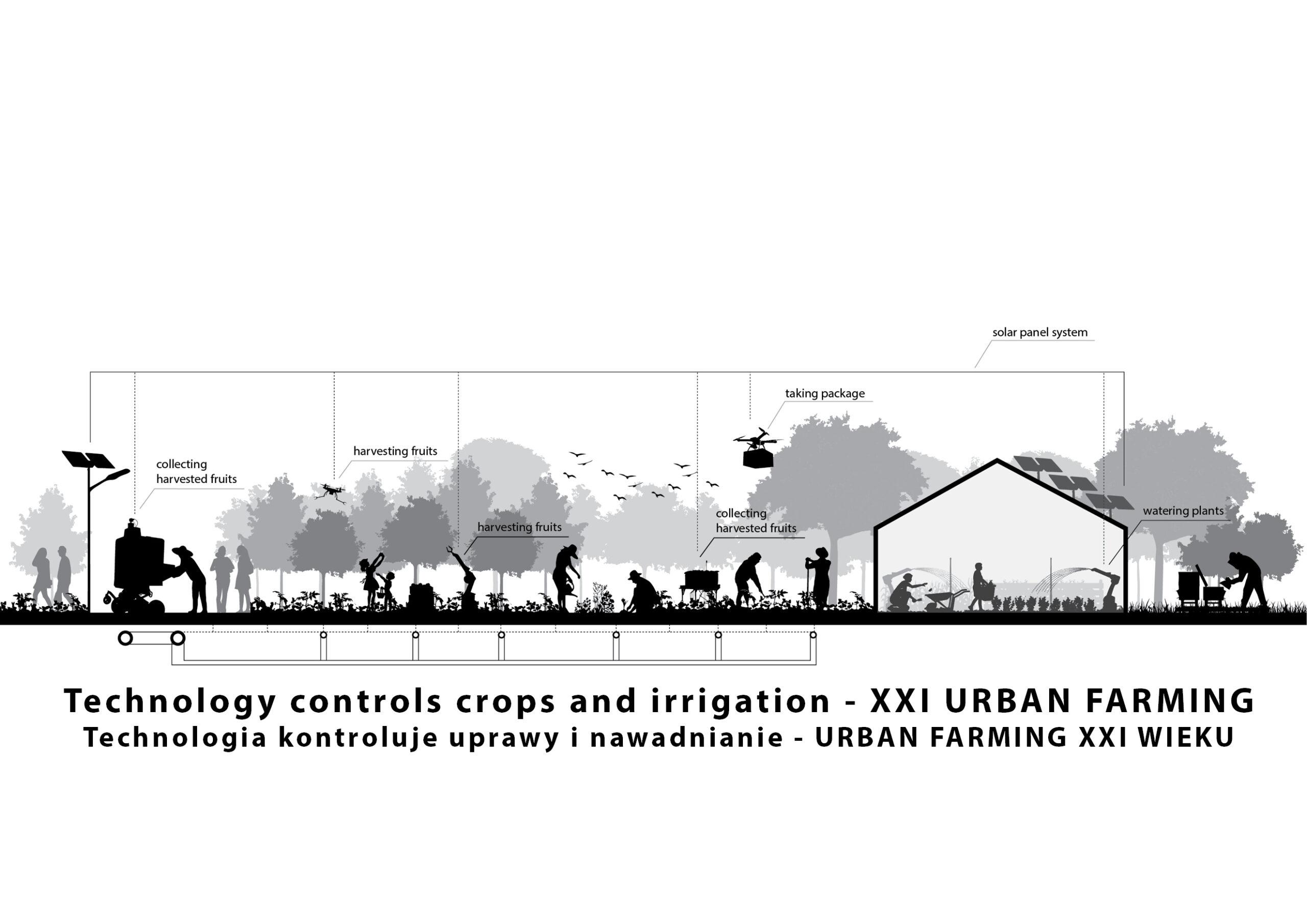 MJZ-Urban-Farming-XXI-Ogrody-Dzialkowe-Przyszlosci14-2