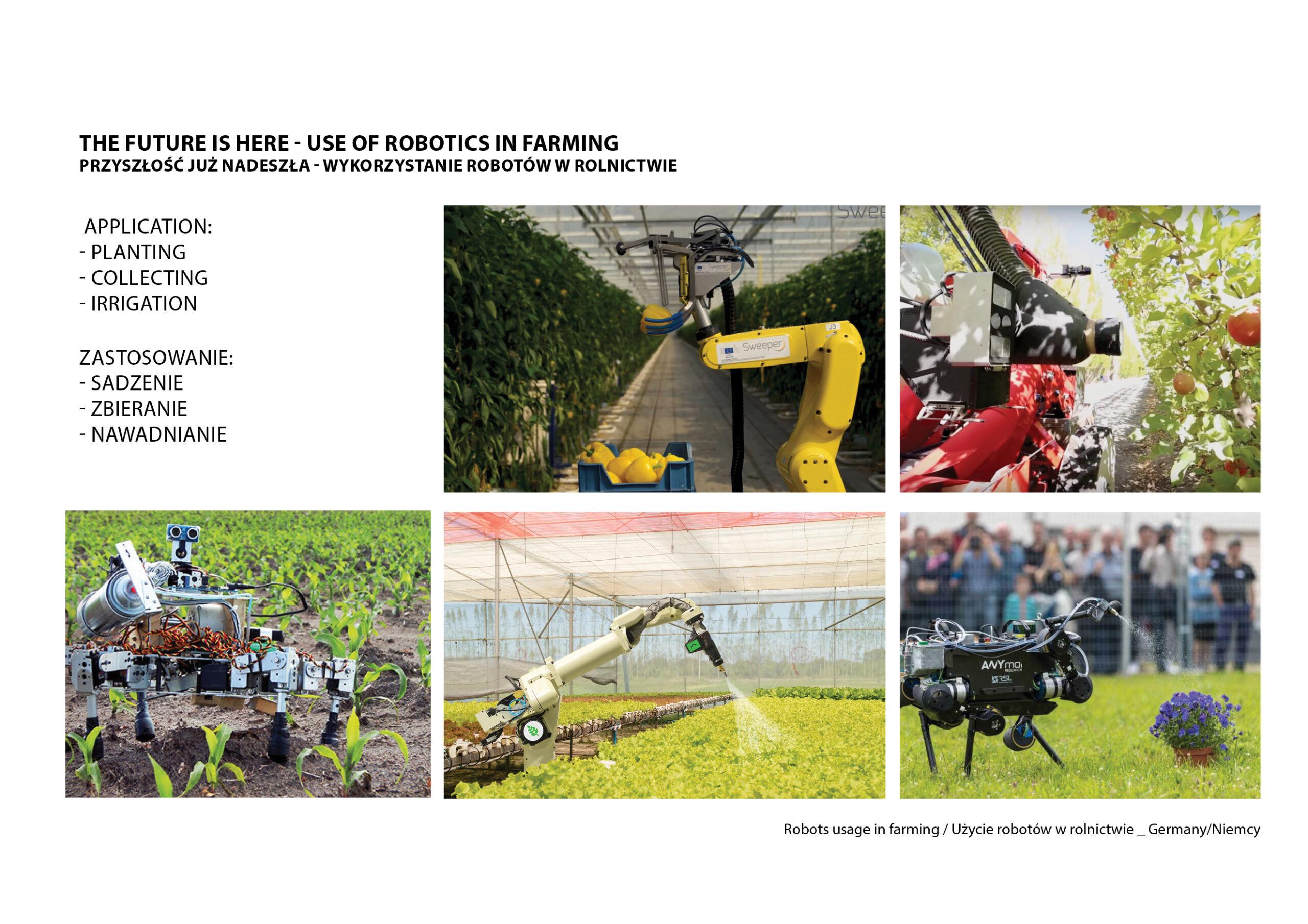 MJZ-Urban-Farming-XXI-Ogrody-Dzialkowe-Przyszlosci16-1