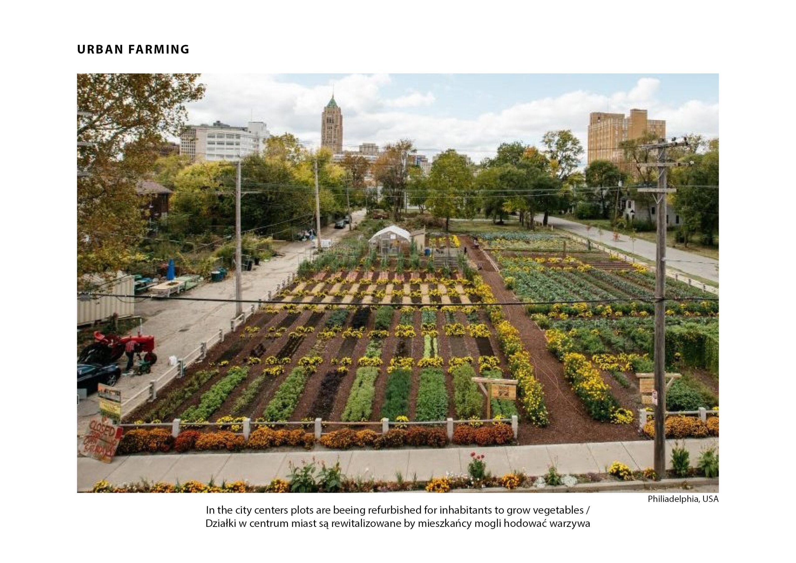 MJZ-Urban-Farming-XXI-Ogrody-Dzialkowe-Przyszlosci2-1