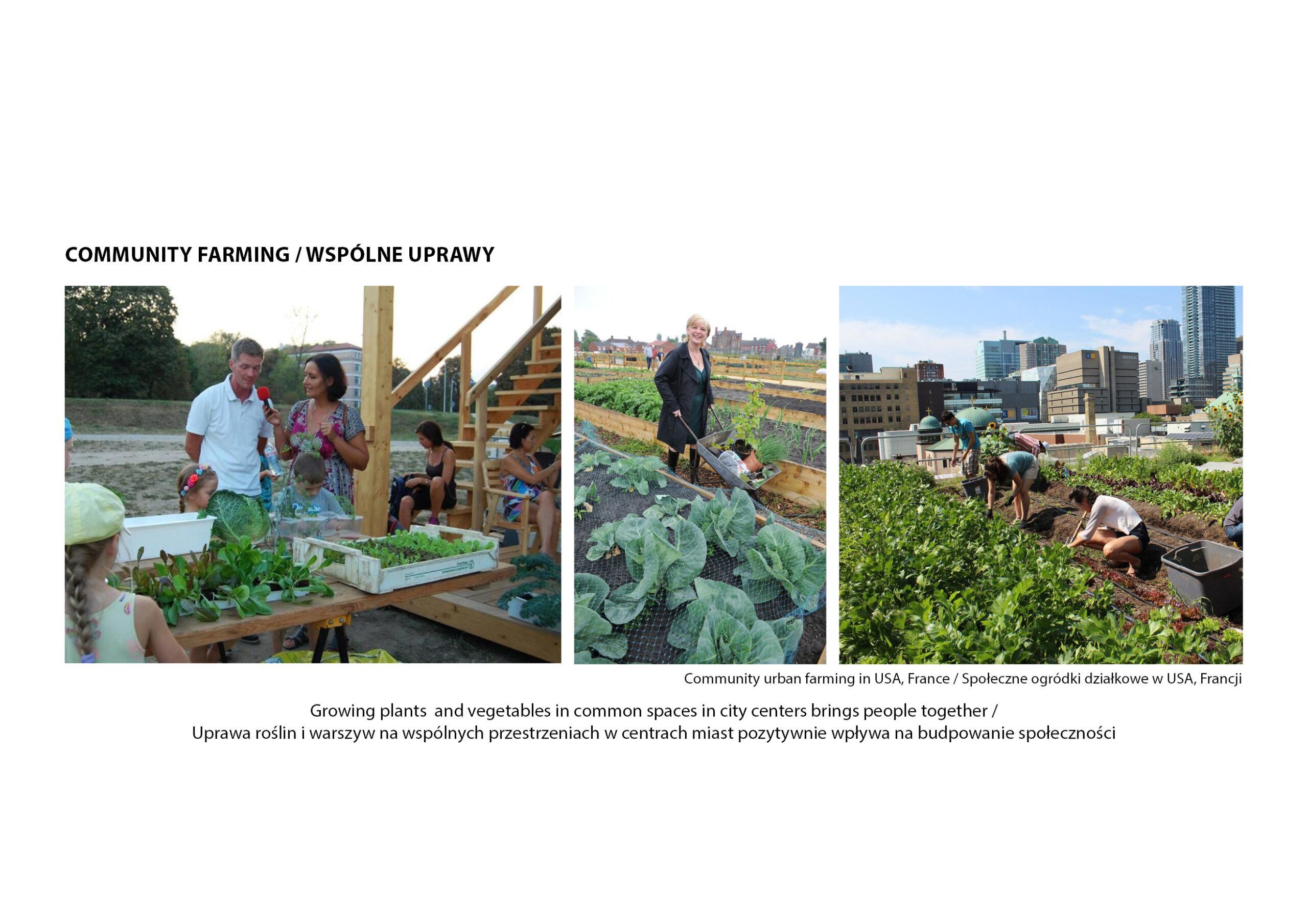 MJZ-Urban-Farming-XXI-Ogrody-Dzialkowe-Przyszlosci3-1