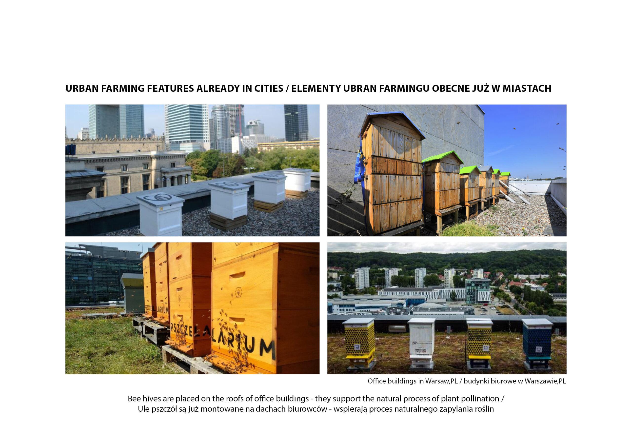 MJZ-Urban-Farming-XXI-Ogrody-Dzialkowe-Przyszlosci4-1