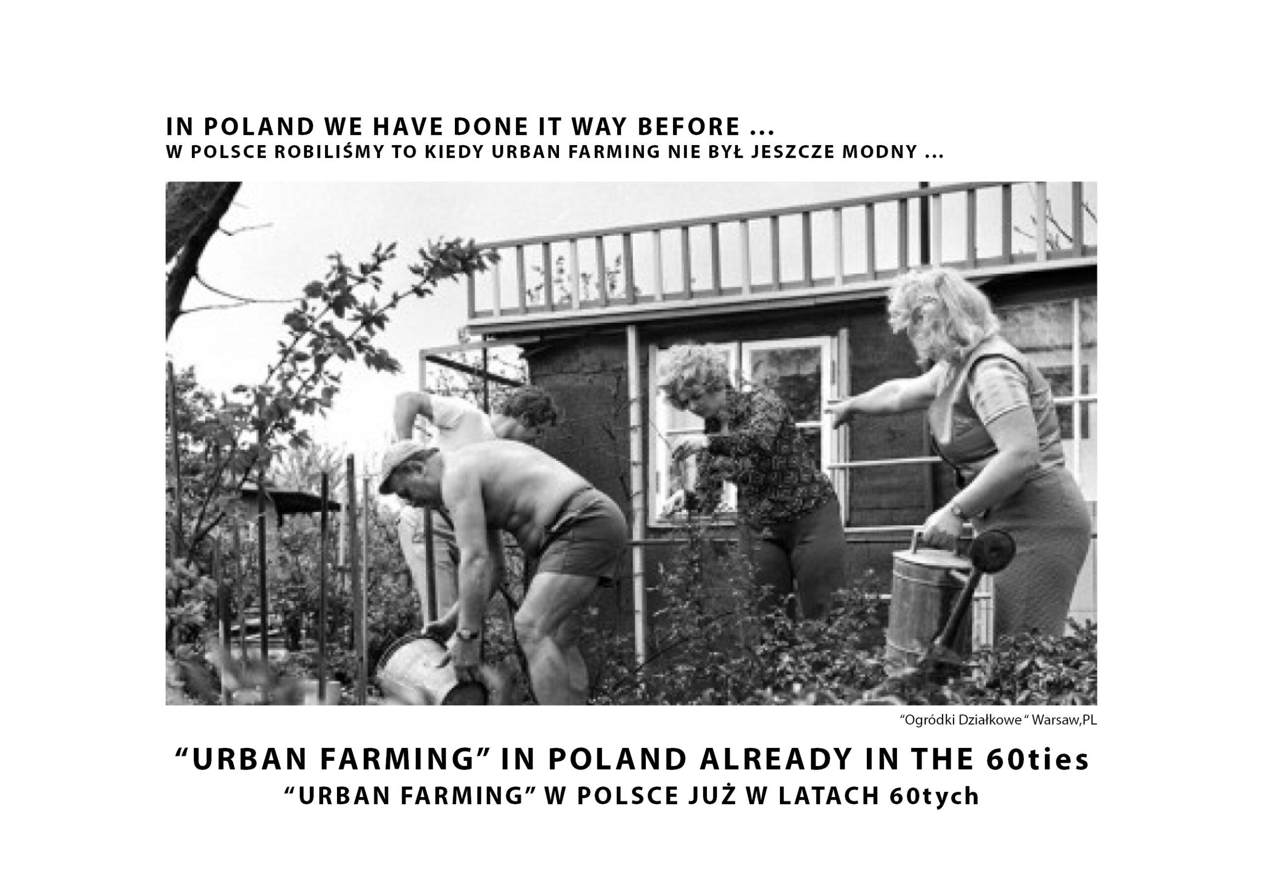 MJZ-Urban-Farming-XXI-Ogrody-Dzialkowe-Przyszlosci7-1