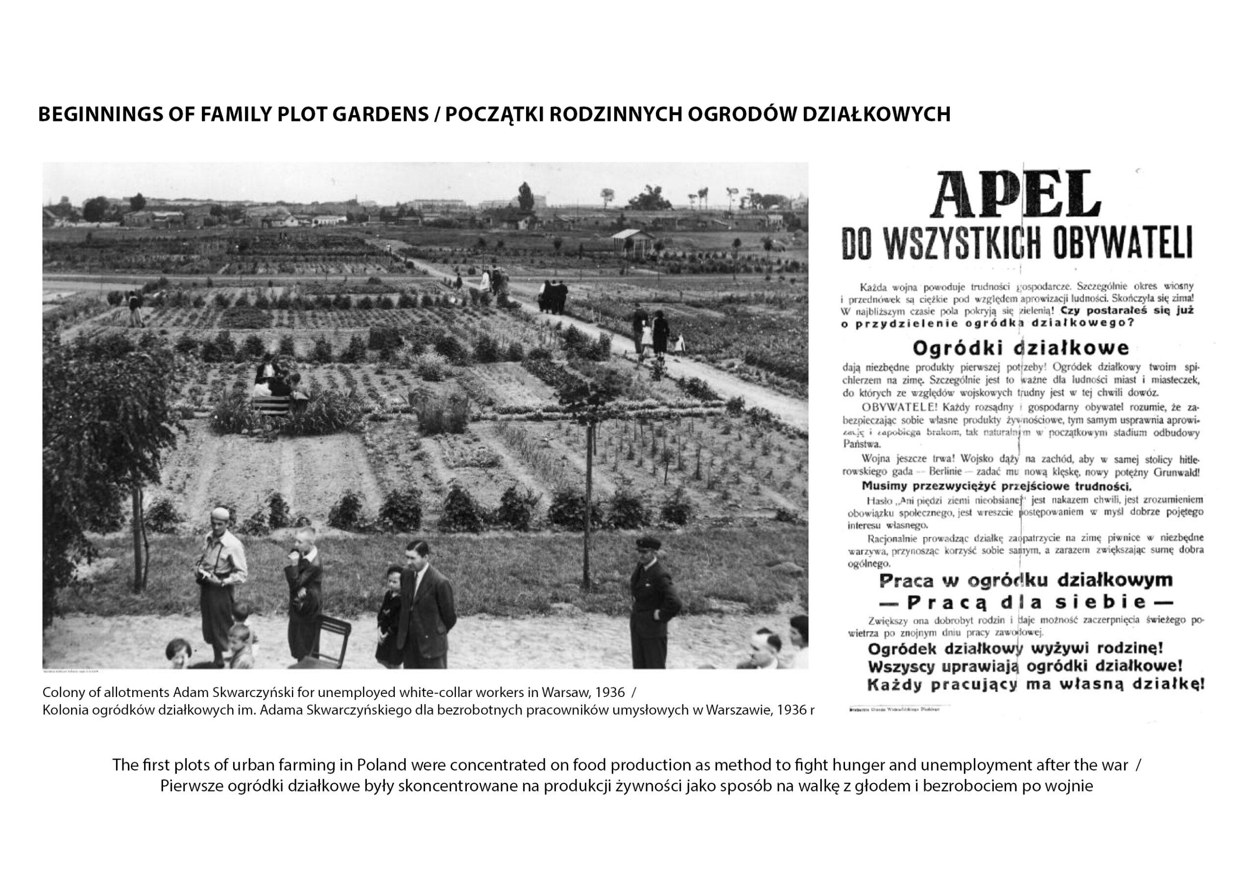 MJZ-Urban-Farming-XXI-Ogrody-Dzialkowe-Przyszlosci8-1