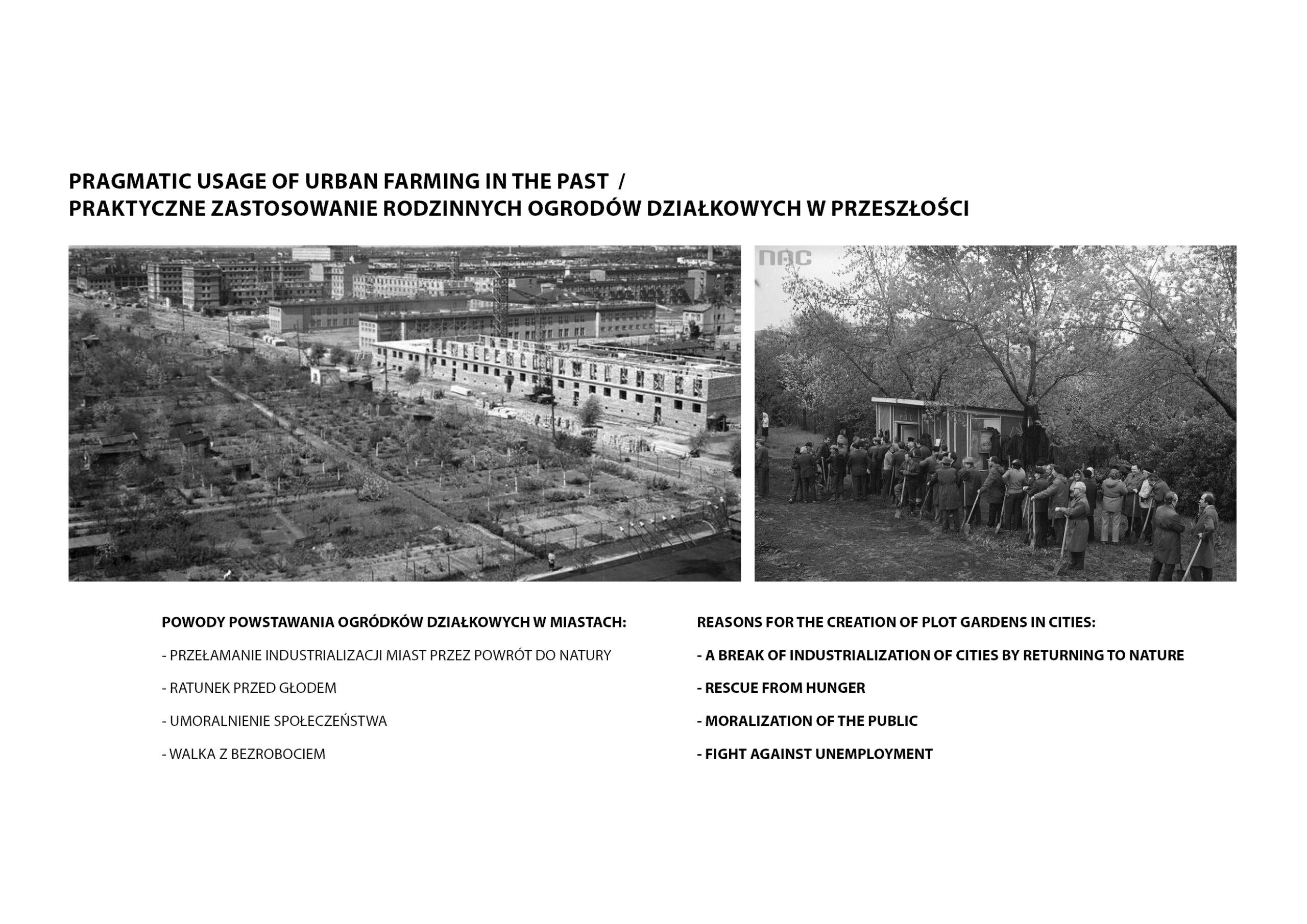 MJZ-Urban-Farming-XXI-Ogrody-Dzialkowe-Przyszlosci9-1